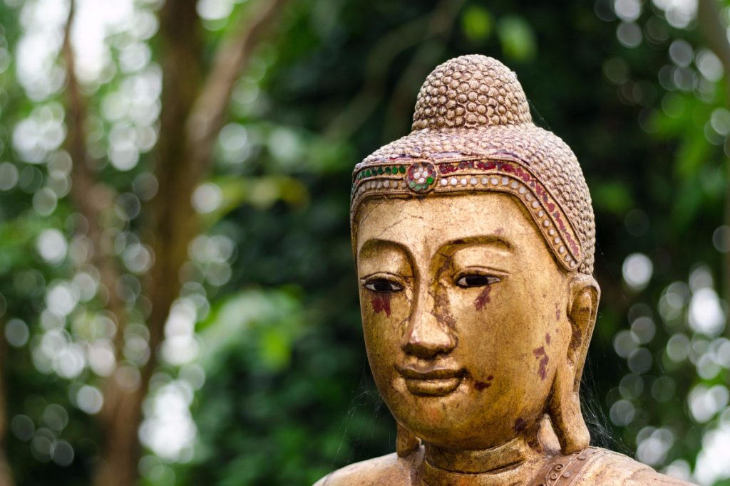 The Number One Cause of Suffering According to Buddhism (and What You Can Do About it)