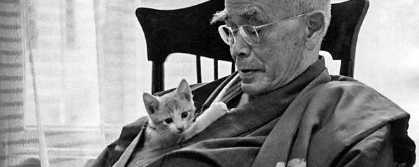 Japanese Zen Philosopher Reveals Why Suffering Unlocks the Secrets of Life