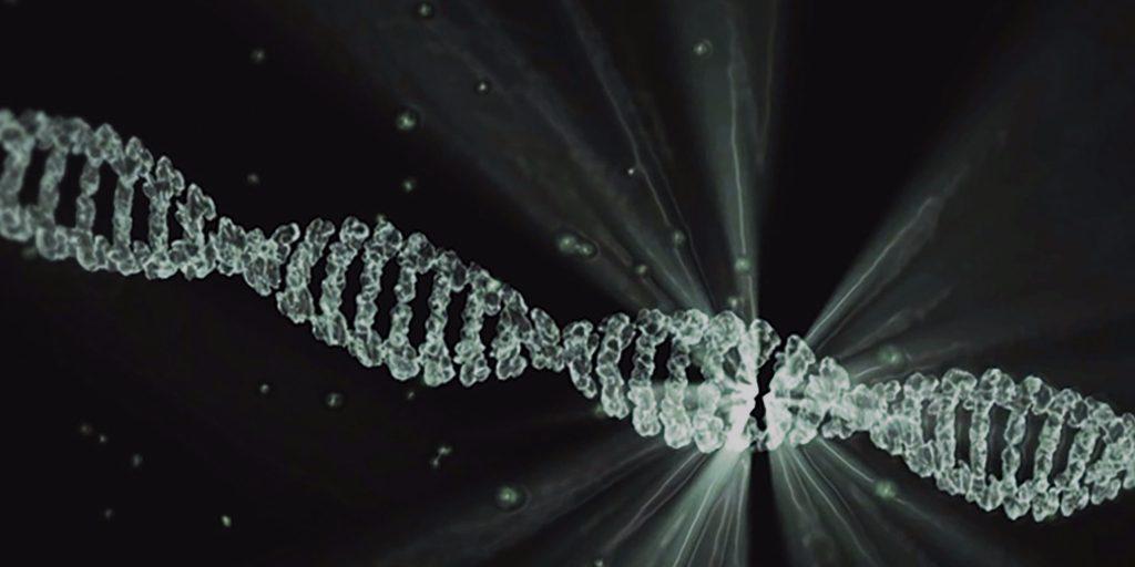 Josiah Zaynor, Josiah Zaynor CRISPR