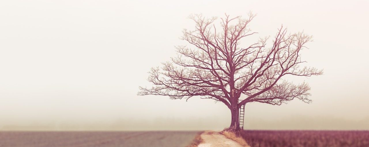 The top 5 regrets of the dying (and how knowing them helps you to live a better life)
