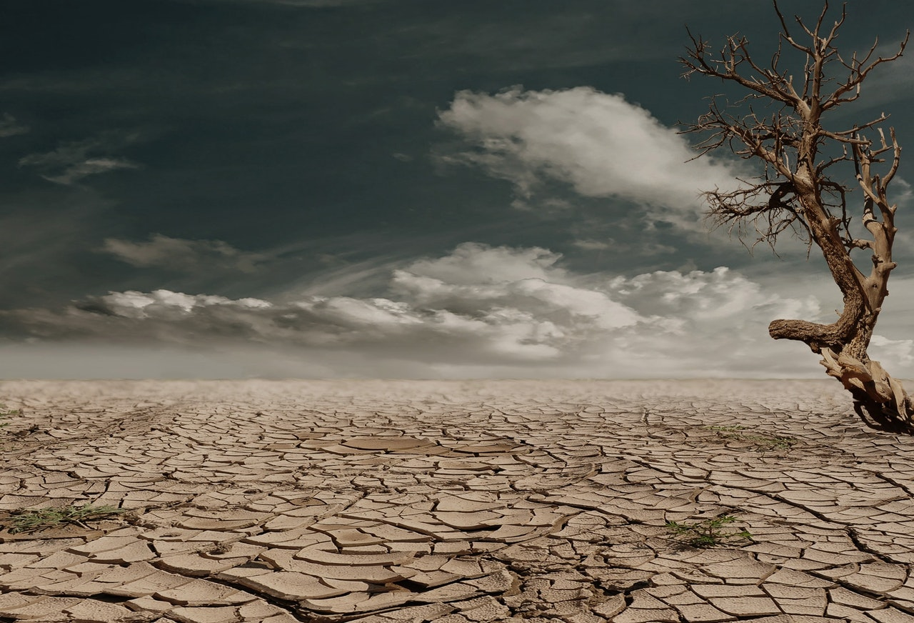 permian period climate change