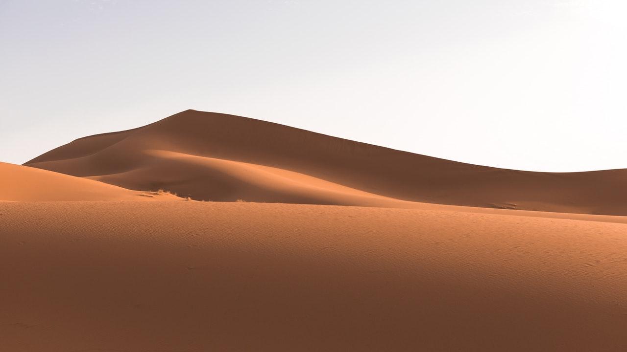 permian period desert pangaea