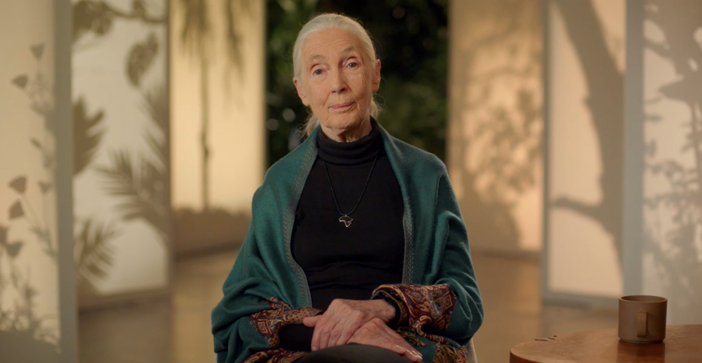 Jane Goodall masterclass review