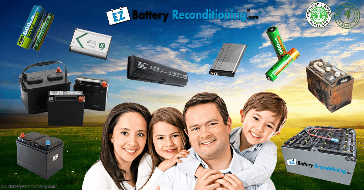 about ez battery reconditioning program